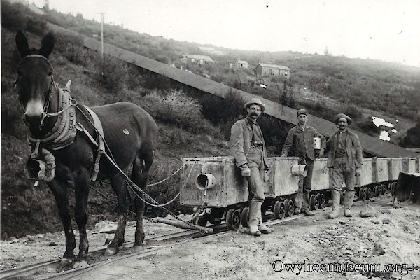 Mule Pulling Ore Cars on DeLamar Mill